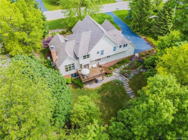 8950 Morning Mist Drive, Independence Twp, MI 48348 (MLS #218049993) :: The Toth Team