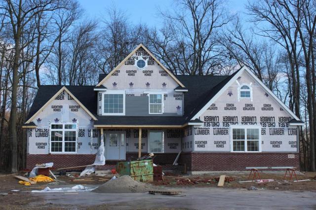 4383 Kelsey Avenue, Raisin Township, MI 49221 (#543257594) :: The Buckley Jolley Real Estate Team