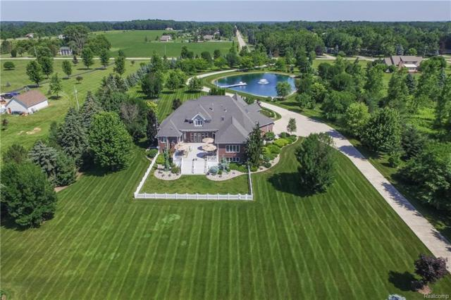 11141 Potter Road, Clayton Twp, MI 48433 (#218059639) :: The Buckley Jolley Real Estate Team