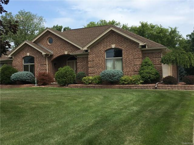 4705 18 1/2 MILE Road, Sterling Heights, MI 48314 (#218059968) :: The Buckley Jolley Real Estate Team