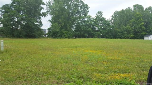 1994 Woodland Estates Drive, Saint Clair, MI 48079 (#218076288) :: The Buckley Jolley Real Estate Team