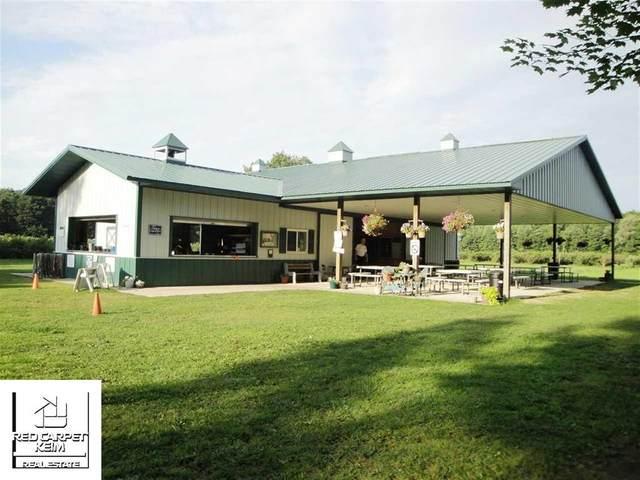13240 Blueberry Lane, Forest Twp, MI 48464 (#5021493711) :: BestMichiganHouses.com