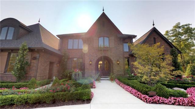 8927 Fran Dor Lane, Salem Twp, MI 48168 (#218082916) :: Duneske Real Estate Advisors