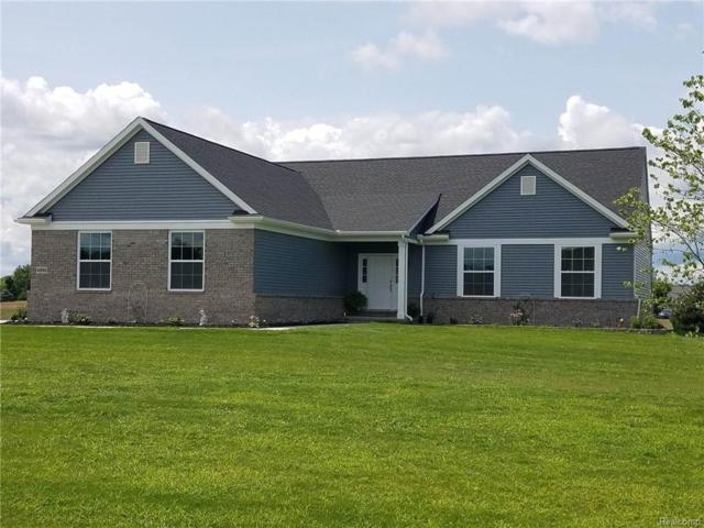 4775 Emerald Valley Loop, Handy Twp, MI 48836 (#218088158) :: The Buckley Jolley Real Estate Team