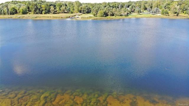 000 Huff Lake Court, Brandon Twp, MI 48462 (#218088987) :: Duneske Real Estate Advisors