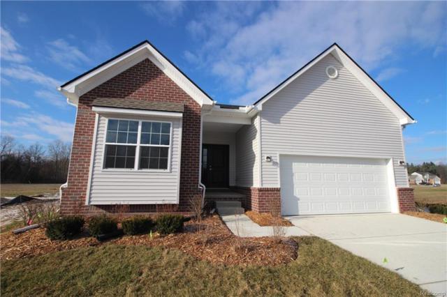 22494 Georgia Pine, Huron Twp, MI 48164 (#218094047) :: The Buckley Jolley Real Estate Team
