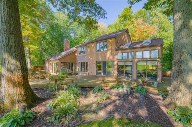 3015 Duana Drive, Milford Twp, MI 48380 (#218098670) :: The Buckley Jolley Real Estate Team