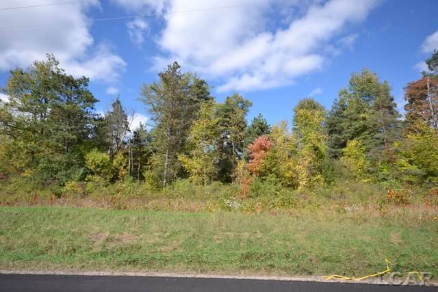10770 E Chicago Road, Somerset Twp, MI 49282 (MLS #56031362374) :: The Toth Team