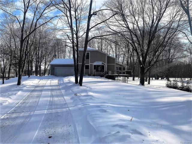 20155 Tipsico Lake Road, Rose Twp, MI 48442 (#219000517) :: The Buckley Jolley Real Estate Team