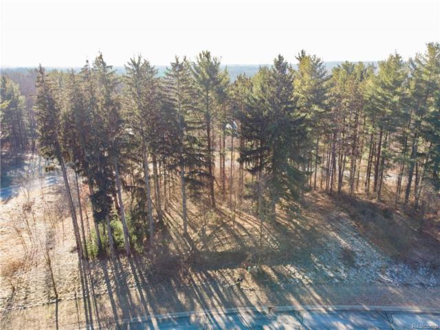 LOT 26 Rexford Court, Hamburg Twp, MI 48116 (#219002311) :: The Buckley Jolley Real Estate Team