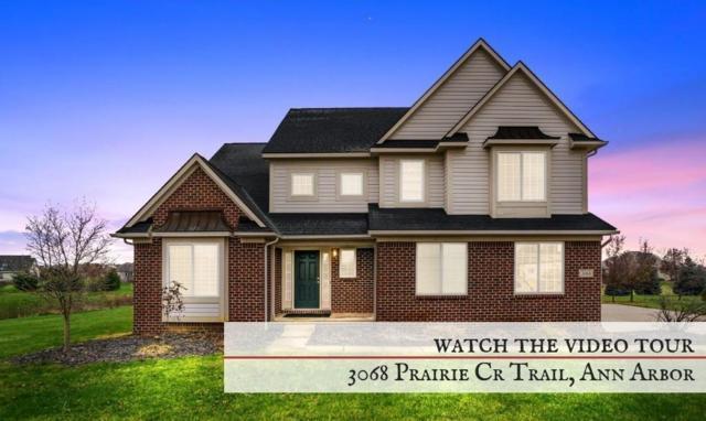 3068 Prairie Circle Trail, Lodi Twp, MI 48103 (#543262589) :: RE/MAX Classic