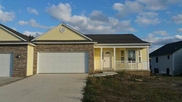 3269 Heritage Boulevard, Swartz Creek, MI 48473 (#5021573066) :: The Buckley Jolley Real Estate Team