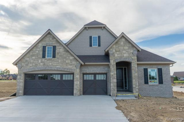 7193 Venturi Drive, Washington Twp, MI 48094 (#219017233) :: Team Sanford
