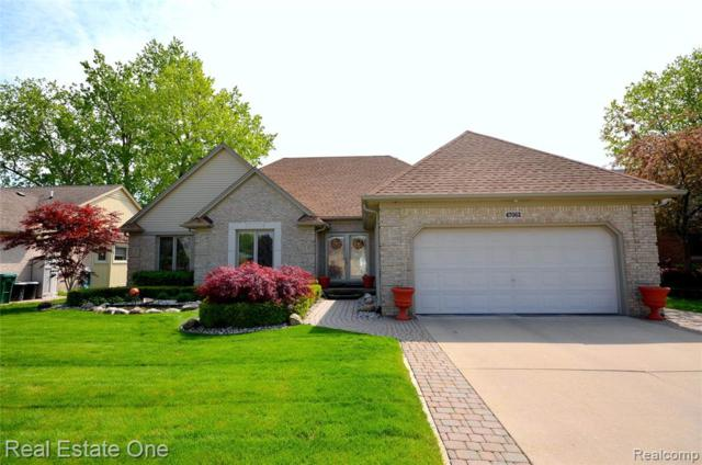 47062 Stony Brook Dr, Macomb Twp, MI 48044 (#219026846) :: The Buckley Jolley Real Estate Team