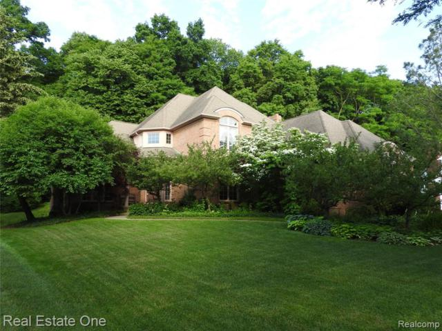21320 Wheaton Lane, Novi, MI 48375 (#219030882) :: The Buckley Jolley Real Estate Team