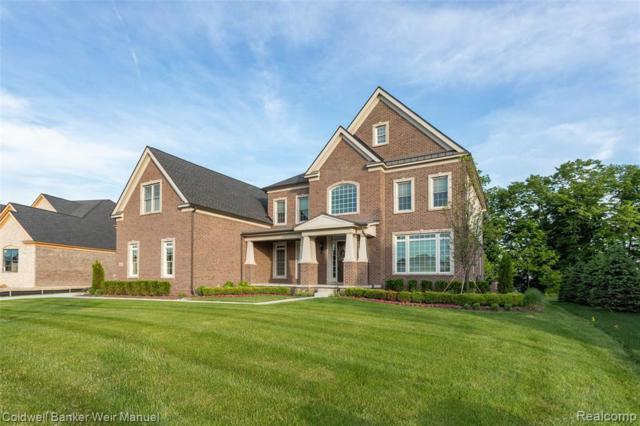 18120 Shagbark Drive, Northville Twp, MI 48168 (#219033428) :: The Buckley Jolley Real Estate Team