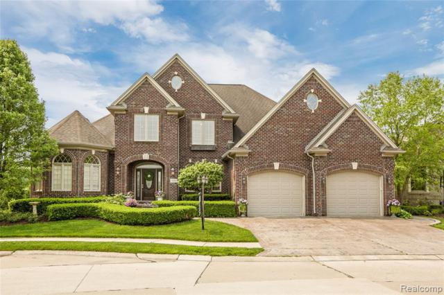 20103 Blackfoot Drive, Clinton Twp, MI 48038 (#219039672) :: The Alex Nugent Team | Real Estate One