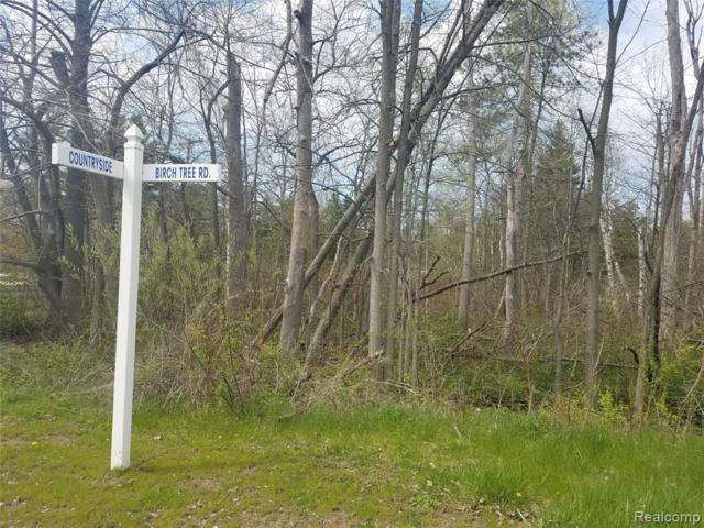 0 Birchtree Road, Worth Twp, MI 48450 (#219042400) :: RE/MAX Nexus