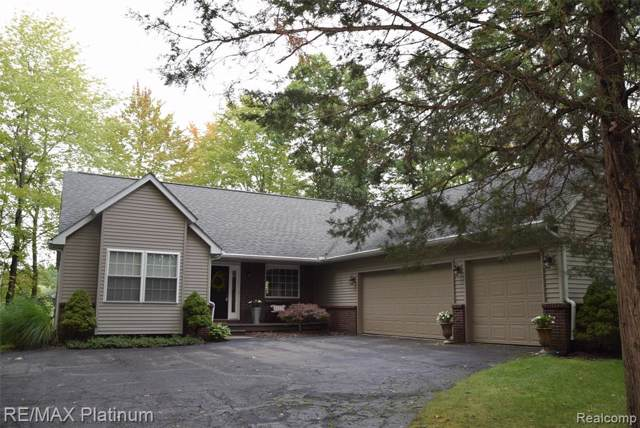 2402 Kuri Lane, Marion Twp, MI 48843 (#219093565) :: The Buckley Jolley Real Estate Team