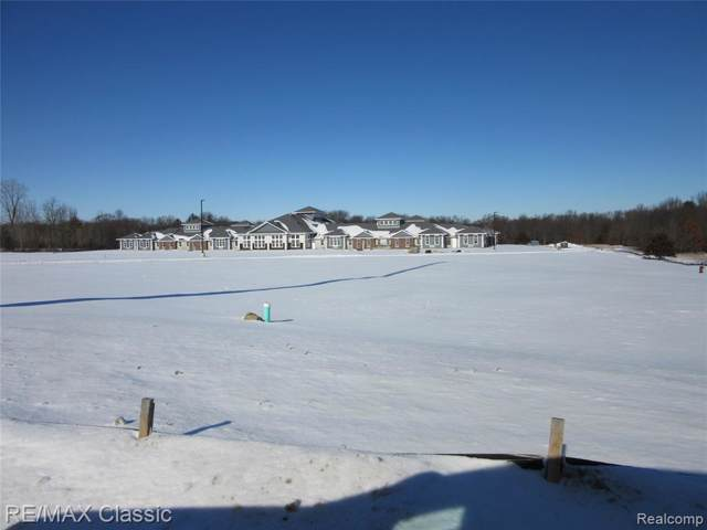11579 Highland Road, Hartland Twp, MI 48353 (#2200005140) :: The Buckley Jolley Real Estate Team