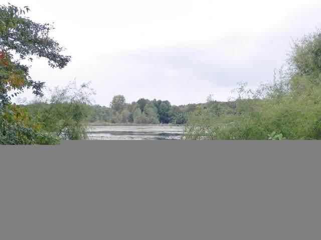 VL Washburn Lake Lane, COLON TWP, MI 49040 (#68020041508) :: GK Real Estate Team