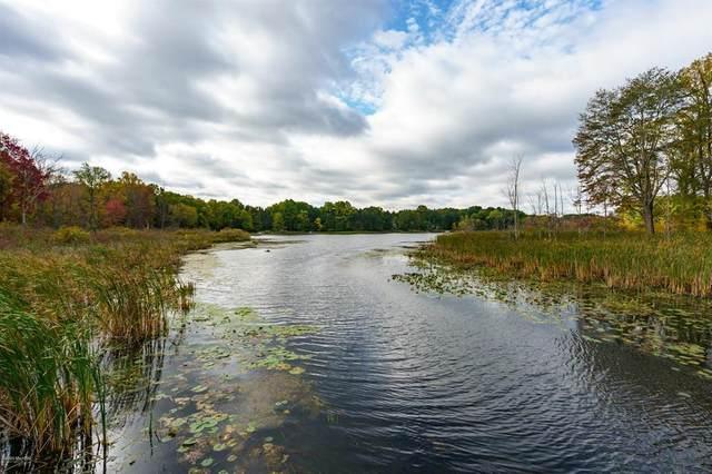 S Portage Road, SCHOOLCRAFT TWP, MI 49097 (#66020040917) :: Robert E Smith Realty
