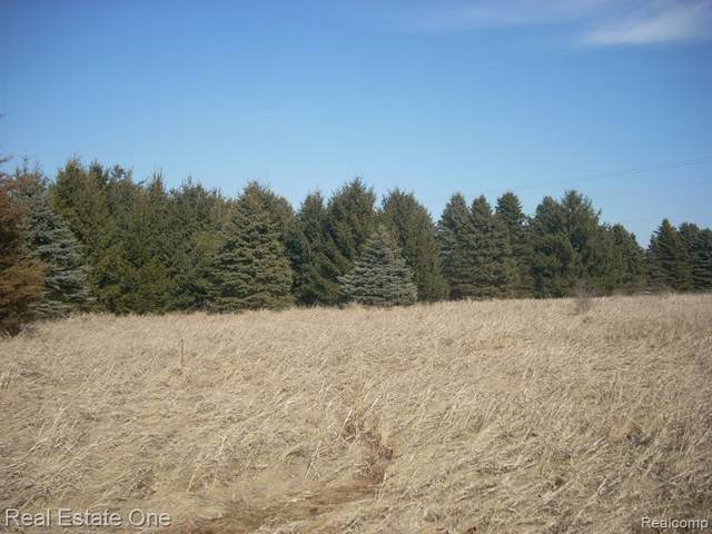 """PAR """"A"""" Lamb Rd, Manchester Twp, MI 48158 (#2210007105) :: Real Estate For A CAUSE"""