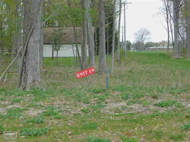 35163 Woodside Drive, Richmond, MI 48062 (#58050034601) :: The Mulvihill Group
