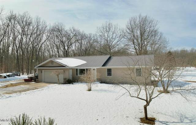 3020 Skidmore Road, Dickson Twp, MI 49619 (#67021009301) :: Real Estate For A CAUSE