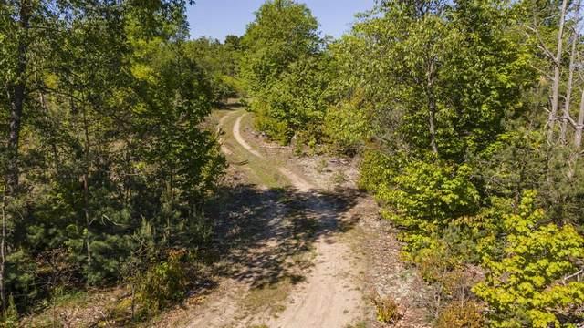 V/L Mackinaw Trail, Rose Lake Twp, MI 49688 (#72021011279) :: RE/MAX Nexus