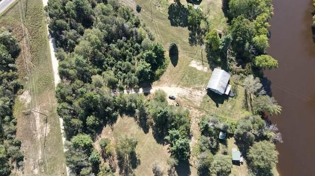 9766 River Bend Drive, Evart Twp, MI 49631 (#72021106539) :: Duneske Real Estate Advisors