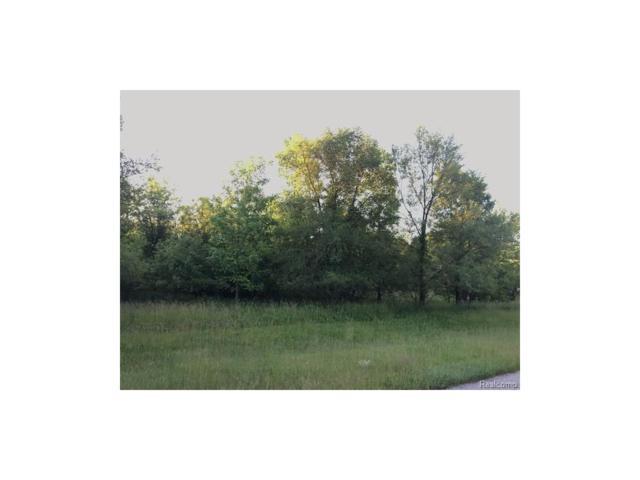 0 Craftsbury Court, Tecumseh Twp, MI 49286 (#543247019) :: The Buckley Jolley Real Estate Team