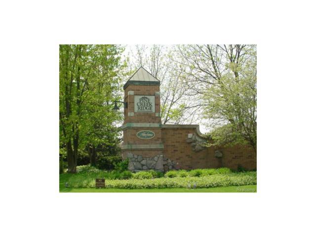 Lot 41 - Pinemont, Hamburg Twp, MI 48116 (MLS #213069490) :: The Toth Team