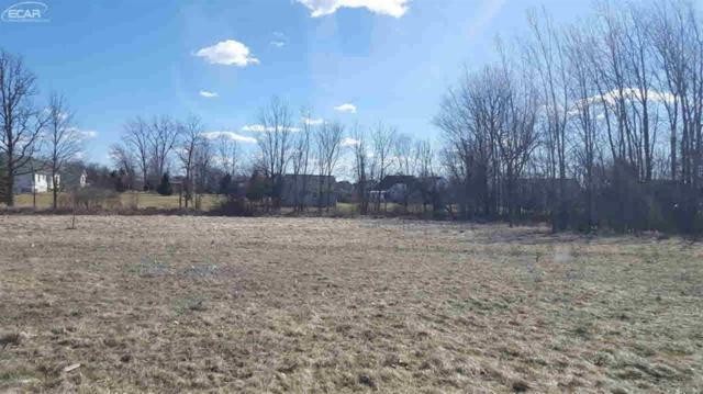 14017 Tupper Lake Drive, Fenton Twp, MI 48451 (MLS #5021234914) :: The Toth Team