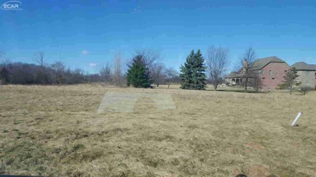14016 Tupper Lake Drive, Fenton Twp, MI 48451 (MLS #5021237049) :: The Toth Team
