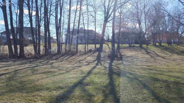 4359 Oak Tree Trail, Fenton Twp, MI 48430 (#5021247387) :: The Buckley Jolley Real Estate Team