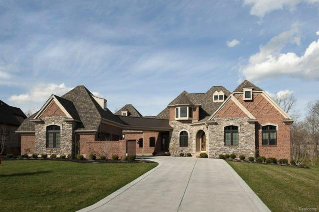 43482 Cottisford Street, Novi, MI 48167 (#217112201) :: The Buckley Jolley Real Estate Team