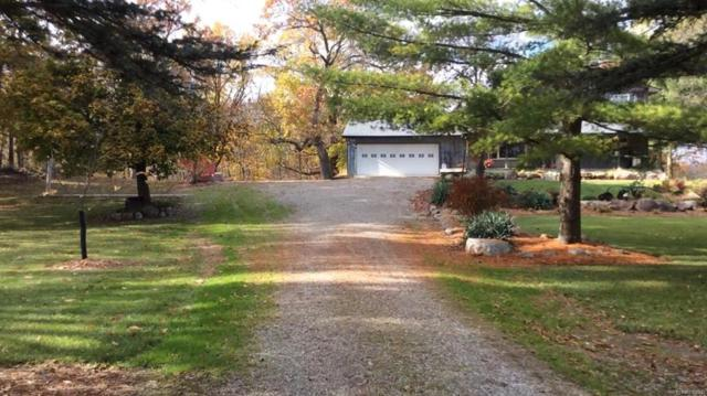 15500 Van Tuyle Road, Manchester Twp, MI 48158 (#543255032) :: RE/MAX Classic