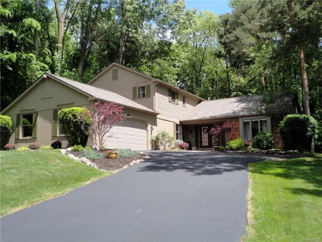 8086 Fawn Valley Drive, Independence Twp, MI 48348 (#218050157) :: The Buckley Jolley Real Estate Team