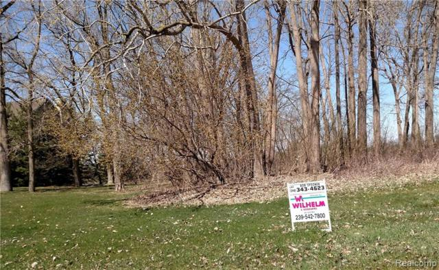 VACANT Steephollow Drive, White Lake Twp, MI 48386 (#218059063) :: The Buckley Jolley Real Estate Team