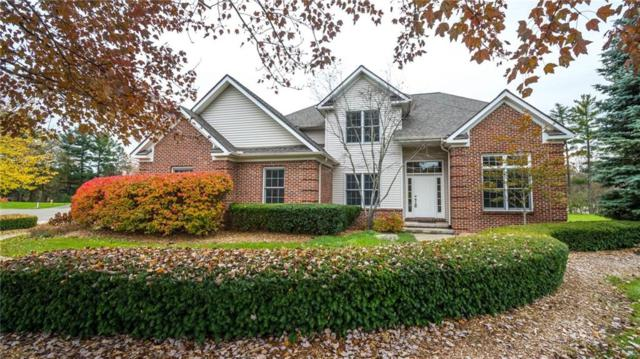 10612 Shadow Valley Court, Green Oak Twp, MI 48178 (#218090345) :: RE/MAX Classic