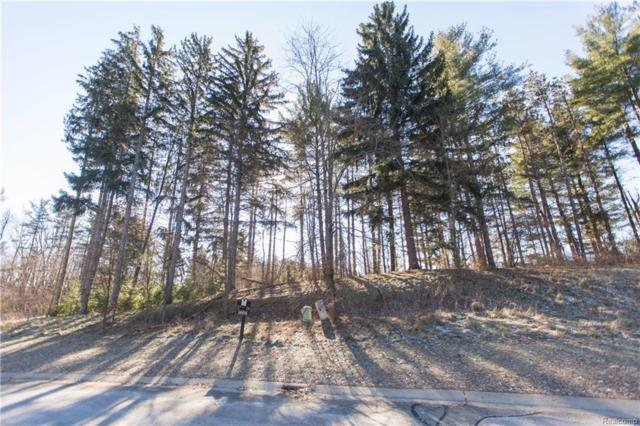 LOT 27 Pinemont Drive, Hamburg Twp, MI 48116 (#219002322) :: The Buckley Jolley Real Estate Team