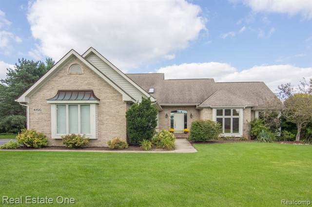 4100 Newcastle Drive, Orion Twp, MI 48348 (#219040050) :: The Buckley Jolley Real Estate Team