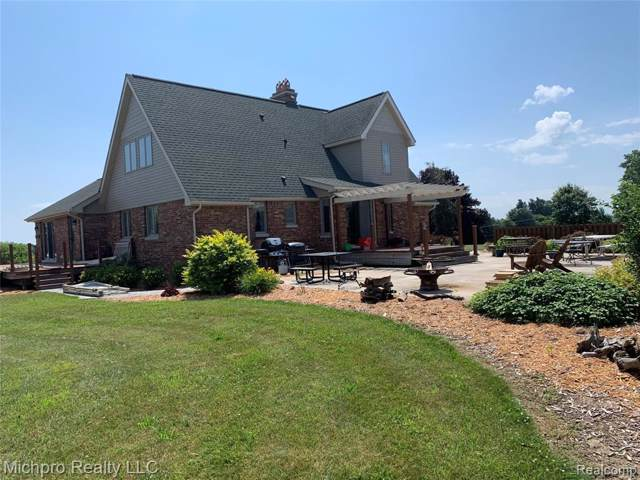 7229 Shaw Road, Goodland Twp, MI 48444 (#219069375) :: Alan Brown Group