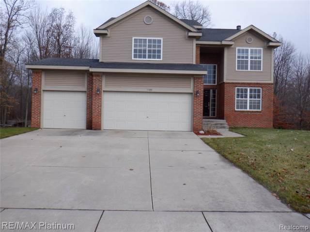 11243 Anya Drive, Hartland Twp, MI 48353 (#219111847) :: The Buckley Jolley Real Estate Team
