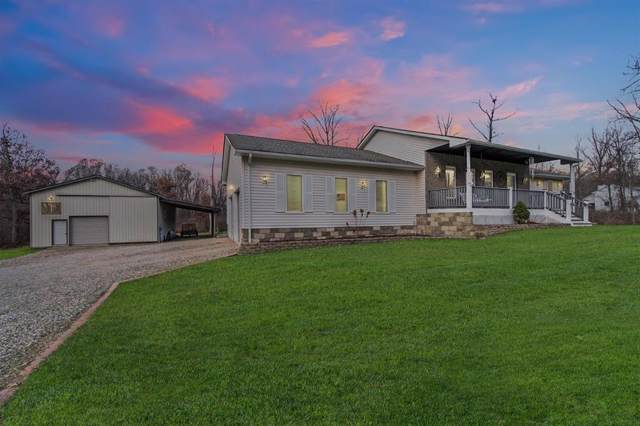 6000 San Luray Road, Unadilla, MI 48137 (#543270241) :: The Buckley Jolley Real Estate Team