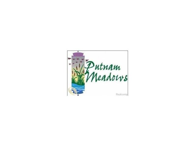 LOT 86 Mangrove Way, Putnam Twp, MI 48169 (MLS #212113160) :: The Toth Team