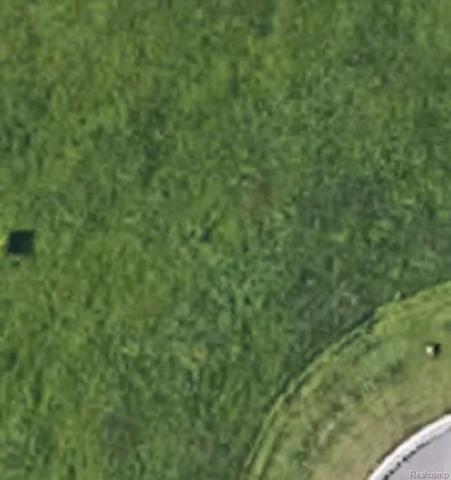 024 Jacob Trail, Flint Twp, MI 48532 (#218052684) :: The Buckley Jolley Real Estate Team