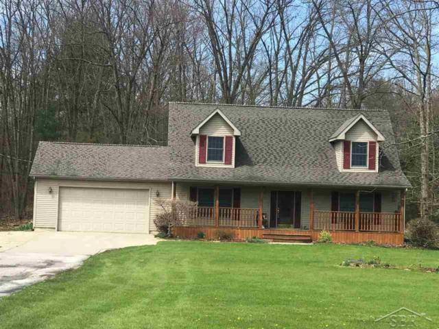 10430 S Graham, ST CHARLES TWP, MI 48655 (MLS #61031370272) :: The Toth Team