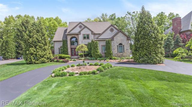 3417 Lakewood Shores Drive, Genoa Twp, MI 48843 (#219011035) :: The Buckley Jolley Real Estate Team